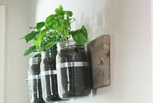 DIY / Some fun Do It Yourself garden (or otherwise) projects - things we wish we had the time for!