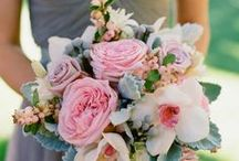 Wedding Bouquets / Gorgeous bouquets from all over - some great inspiration! / by Mahoney's Garden Center
