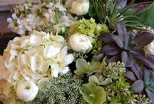 Floral Creations / Some of the gorgeous arrangements we create here at our florists in Winchester & Tewksbury.