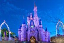 Disney World / by Casey Adams