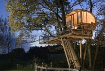 Tree House / by Jan Van Jewell