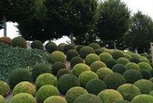 Green Style / Tablero de nuestras cerámicas verdes