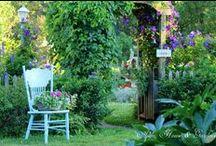 Outdoor Spaces / Outdoor living inspirations / by Susan Kraner