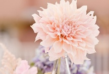 Dreamy Dahlia Wedding Theme