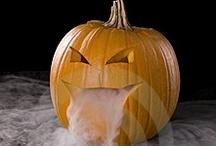 Halloween / by Chalise Schoenfeld