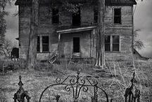 Abandoned / by Vanessa Nadia Moylan