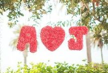 Carnation Wedding Ideas