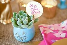 Plant Pot Wedding Favours