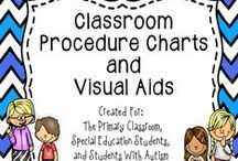 Primary Classroom Ideas / This is a collaborative board to share classroom ideas.  This board includes products, freebies, and ideas for the the primary classroom.