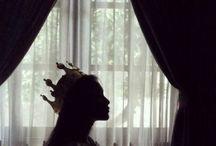 -aot; historia reiss