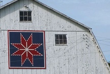 for the love of barns / by laura west kong