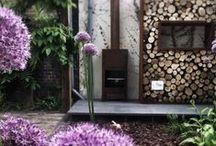 Backyard... Patio... Garden...