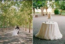 Wedding Bells / by Stephanie Muth Watts