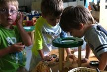 ECE- Science / Science lessons for school and home. PreK to Gr. 6.