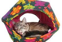 Best Cat Beds / Modern Cat approved beds!