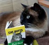 Hilarious Cats / Cats are our favourite kind of comedy—and the cutest!