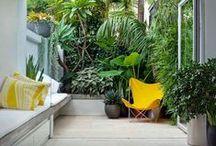 Balcony - Patio - Deck - Pool / by Sandra P. Tomaz
