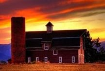 Barns / Barns... just because I like barns!  Red Barns. White Barns. Black Barns.  I just think they are a very cool structure. / by Janie Burnette, REALTOR® Real Estate Georgia, Cumming, Forsyth County rea estate agent