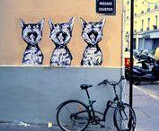 Graffiti Cat / Cat-inspired graffiti