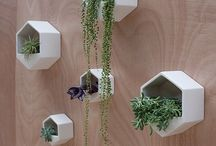TRENDS - Hexagonal / Hexagons and their geometric expression in manmade materials and nature.