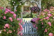 My dream garden / Ideas for my dream garden.