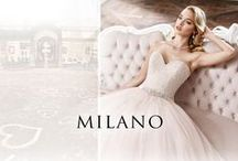 Eddy K. Milano 2016 Collection / An inspiration of love. Fresh and modern, made with soft and light material. / by Eddy K.