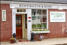 Huntington & Hope / by deborah eldridge