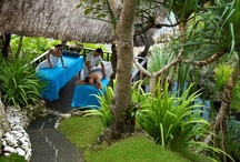 Dear Spa Lover,... / Indulge into a blissful journey at with treatments celebrating the healing and cleansing powers of water at Healing Village Spa at Four Seasons Resort Bali at Jimbaran Bay and authentic spiritual traditions, such as chakra balancing, Balinese Ayurvedic practices, yoga and meditation at Sacred River Spa at Four Seasons Resort Bali at Sayan.