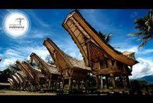Tour in Tana Toraja / Ingin berwisata ke toraja hubungi kami segera di 085397725257 - 085399692296