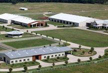Stables / Stables