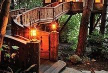 Cabin & Ideas