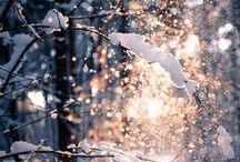 SEASONS / winter wonderland, autumn amour, spring serenity, sweet summer.