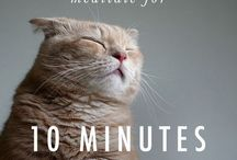 YOUTH | Mindfulness Yo! / Mindful can be playful, fun, and something you always have time for.