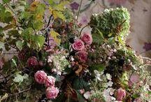 House of Flowers / IN SITU