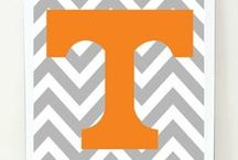 VOLS!!! / by Mary Kate Abercrombie