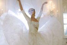 Ballet Beauty / by Kathy Stevens