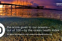 Ocean Health Pin-dex / The Ocean Health Index, created by CI and our partners, is a new way to measure the productivity of our oceans -- and the benefits people get from them. To learn more, visit www.oceanhealthindex.org.