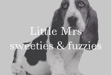 Little Mrs sweeties and fuzzies / Cute Animals and Humans / by Becki Anderson