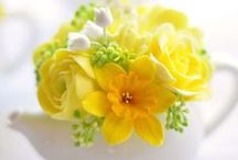 A Touch of Color Amidst the White / by Kathy Stevens
