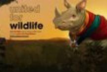 United For Wildlife