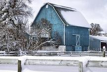 barns&farm Animals