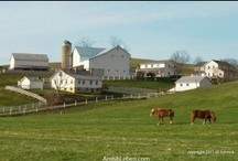 visit to Amish country OH