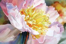 Art // Watercolor / by Aileen Kim