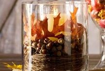Alright Autumn! / Thanksgiving recipes, fall decor, autumn tablescapes, festive desserts and appetizers. I love autumn! / by Therese Brooks