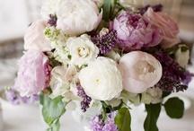 Fantastic Florals / by Brianna Reiley