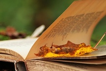 Books, books, books . . . love to read . . .