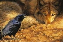 Animalia: Wolves and Their Brothers / by Patty Flagler