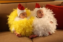 Chickies / Who doesn't love #chickens?! Or books for #children about #chicks? Everyone loves a little #chickie!