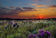 Photography:  Sunrise & Sunset / A time to rise and shine & a time to sit and reflect. / by Carol GS