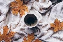 SEASONS || autumn